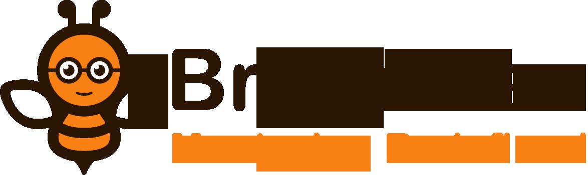 BrightBee Technologies Logo | Mentoring Redefined