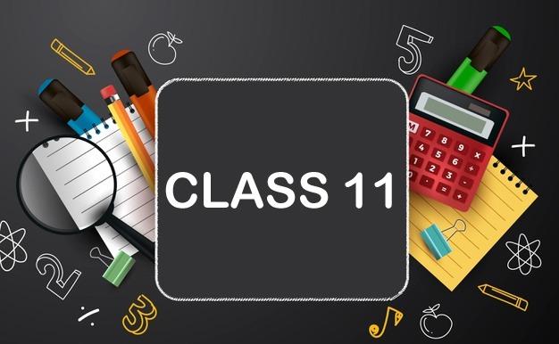 CBSE - Class 11 Course